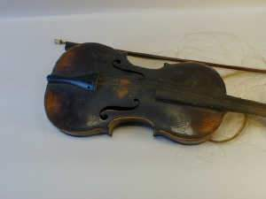 Violin with single piece back