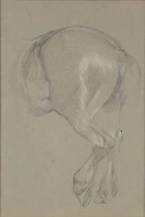 LATE 19TH/EARLY 20TH CENTURY STUDY OF A HORSE