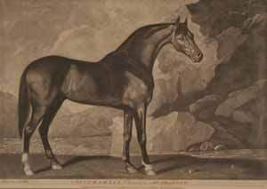 AFTER GEORGE STUBBS (1724-1806)