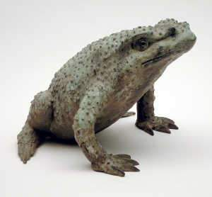 Cast bronze model of a frog