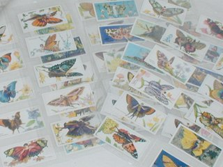 Butterfly Flapper Cigarette Cards